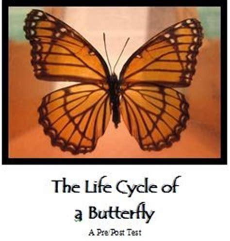 Butterfly Life Cycle- EnchantedLearningcom